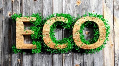 Новый эко-курс для лидеров клубов